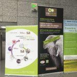 Ministère de la Défense Journée développement durable - Invitation par le Ministère de Capoverde